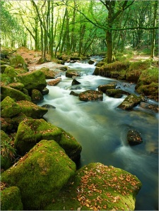 Golitha Falls, River Fowey, Cornwall, England, UK